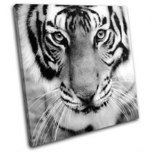 Tiger Face Animals - 13-1339(00B)-SG11-LO